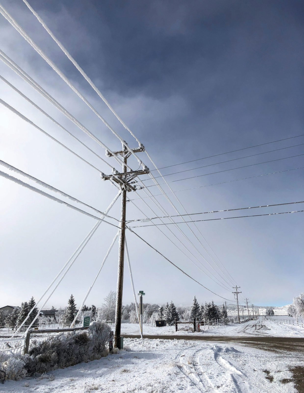 power pole and lines covered in ice