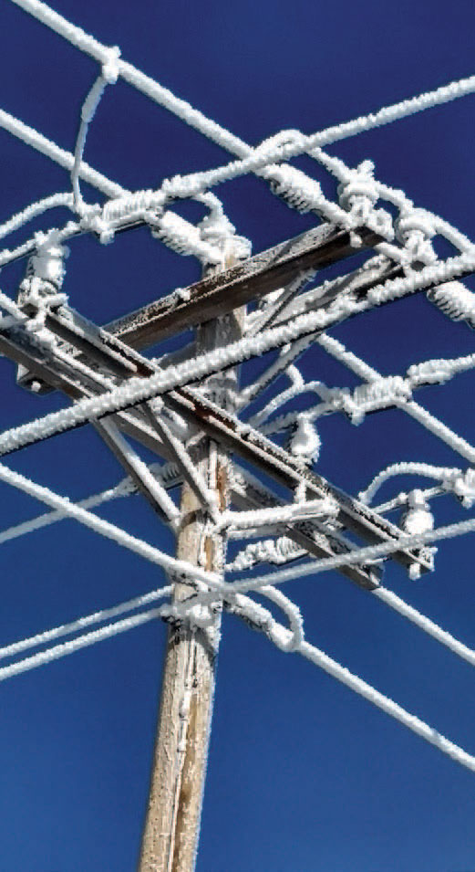 power lines and pole covered in ice