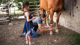 Hannah wrapping a horse's leg while a little girl watches.